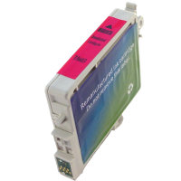 Epson T060320 Remanufactured InkJet Cartridge