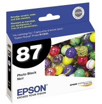 Epson T087120 InkJet Cartridge