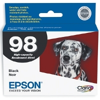 Epson T098120 InkJet Cartridge