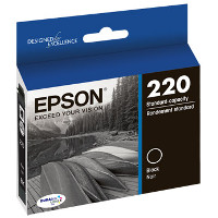 Epson T220120 InkJet Cartridge