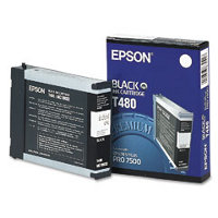 Epson T480011 Black InkJet Cartridge