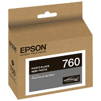 Epson T760120 InkJet Cartridge